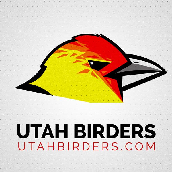 Utah Birders, Utah Birds, Utah Birding, Utah Bird ID